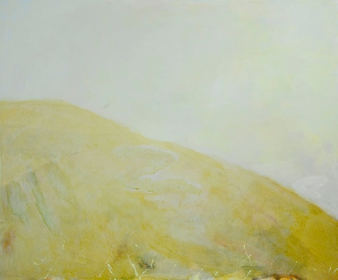 <em>Maes Knoll  2009, acrylic on canvas, 100 x 120cm</em>